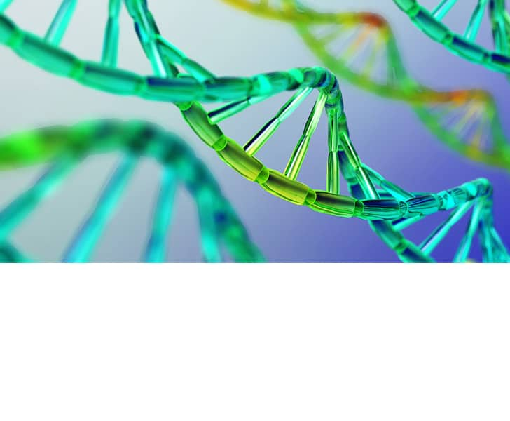 Not all Folate is Created Equal- MTHFR Gene Mutation and Your Fertility